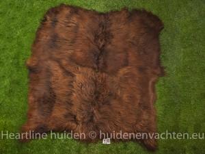 Schapenkleed met 6 IJslandse schapen